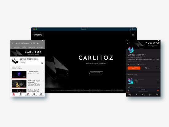 Présentation du site et des réseaux sociaux de Carlitoz